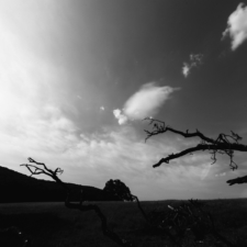 stromom-11