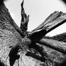 stromom-14