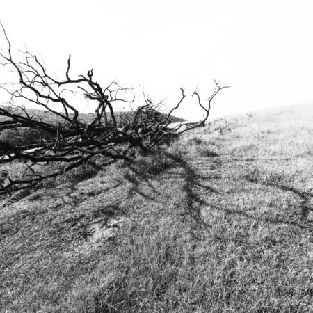 stromom-15