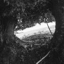 stromom-19