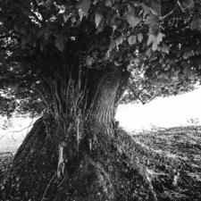 stromom-20